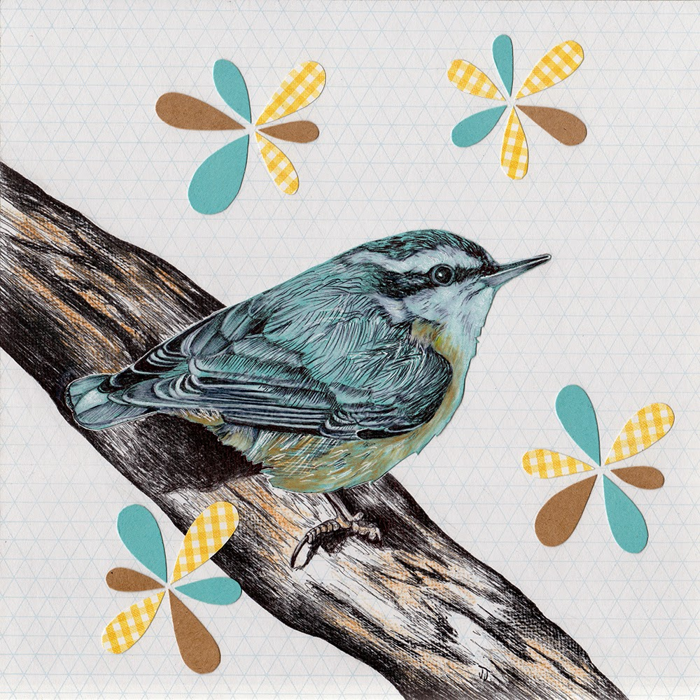 """Red-Breasted Nuthatch"" Mixed Media Illustration by Jennifer Johansson"