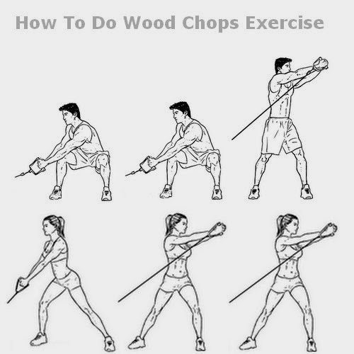 Wood Chop Exercise Fitness Wood - ...