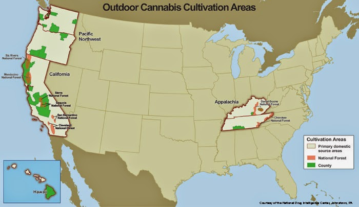 Map - U.S. Outdoor Cannibis Cultivation Areas - Source: http://www.deamuseum.org/ccp/cannabis/production-distribution.html