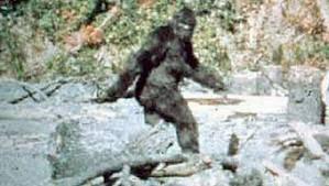 Bigfoot Loves Mr. Richmond!