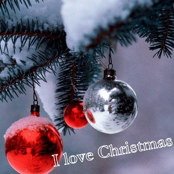 I love Christmas tag