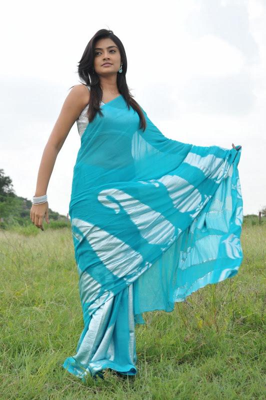 Nikitha Narayan Cool Saree Stills Nikitha Narayan Hot Saree Photos navel show