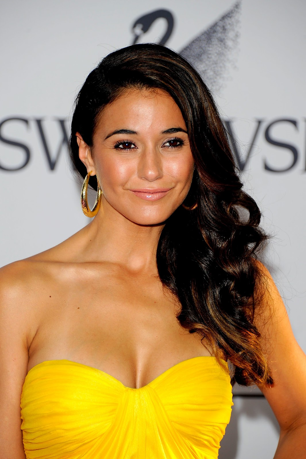 Emmanuelle Chriqui 2011 Cfda Fashion Awards In Nyc (06062011)