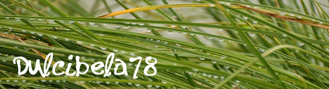Dulcibela78