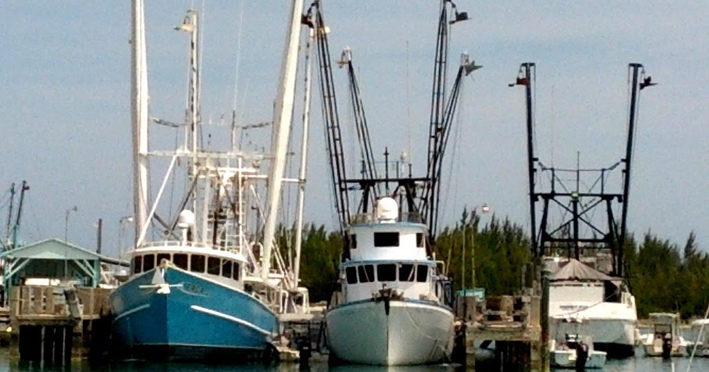 Island spirit sailing adventures spanish wells bahamas for Reward fishing fleet