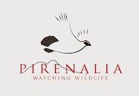 Pirenalia