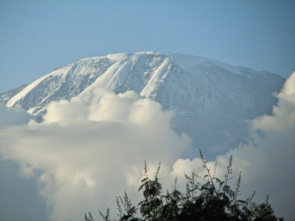 Home contact guides booking - For Current Information On Kilimanjaro Weather Contact Kilimanjaro Safari Holidays Your Professional Licensed Kilimanjaro Climbing Outfitter