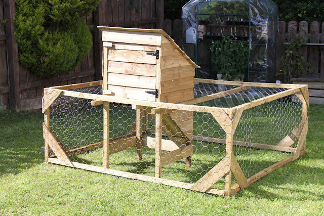 handmade hen run for urban garden