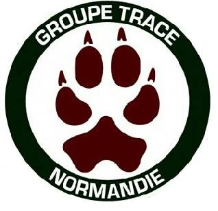 Le groupe Trace Normandie