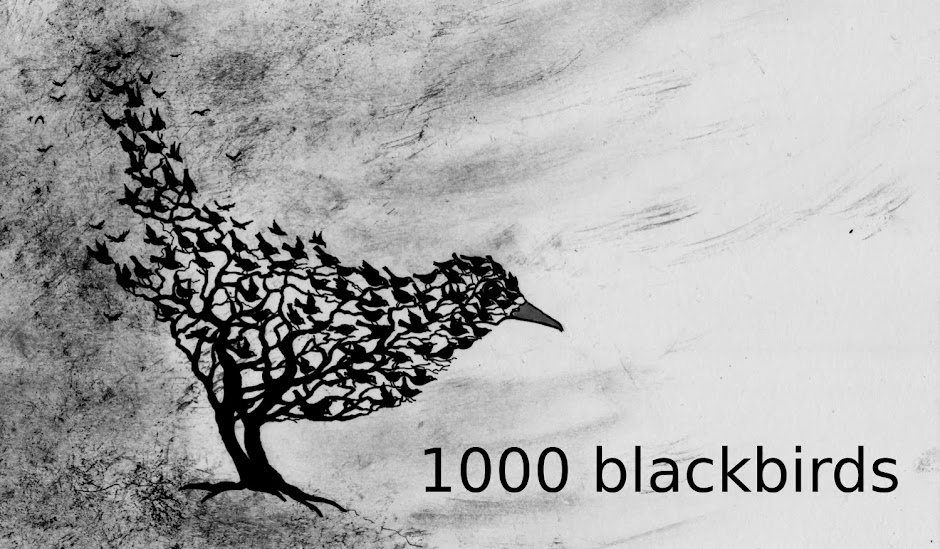 1000 blackbirds