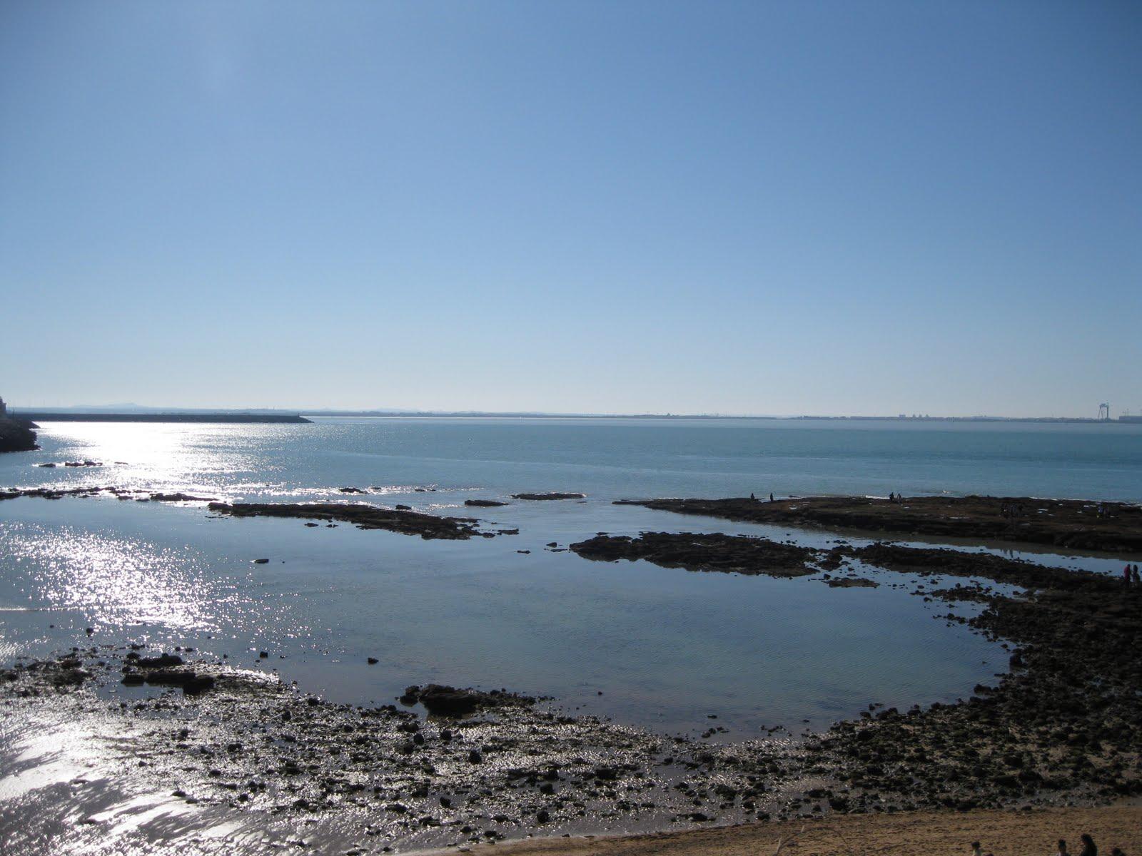 gran marea 2011