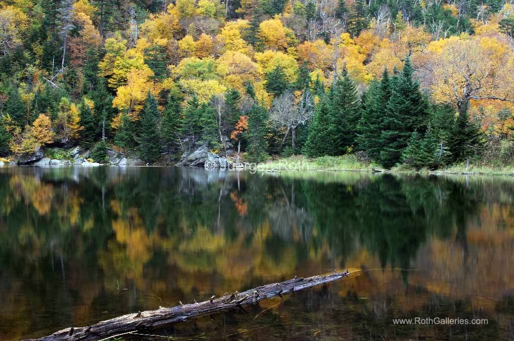 http://juergen-roth.artistwebsites.com/featured/idyllic-vermont-autumn-glory-juergen-roth.html