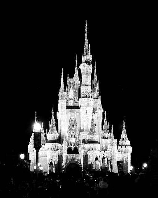 how to take pictures at disney world