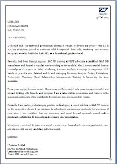 Sap sd domain experience resume