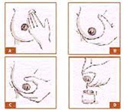 10 paso para la lactancia materna: