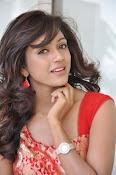 Vithika Sheru glamorous Photo shoot-thumbnail-19