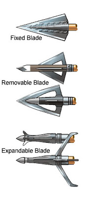 Displaying several different broadheads