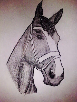 Black horse head drawing - photo#17