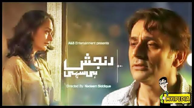 Episode 4 – Ranjish Hi Sahi By Geo TV – 19th November 2013