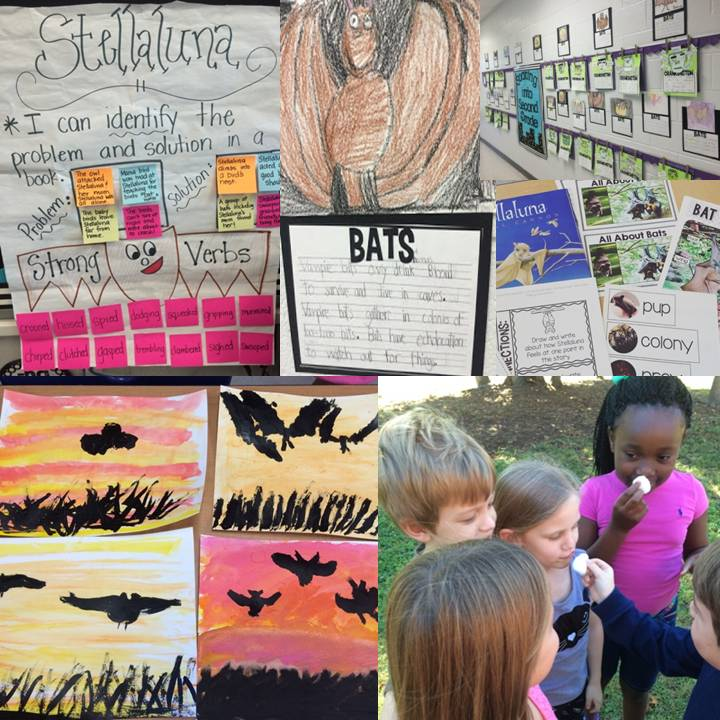 BATS!!! - Queen of the First Grade Jungle on