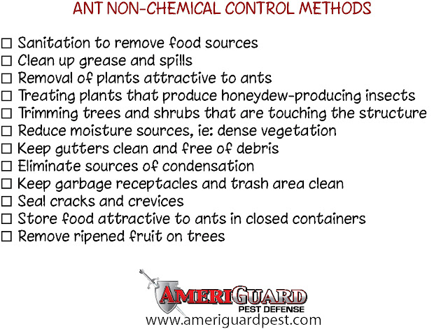 Ant Control Methods