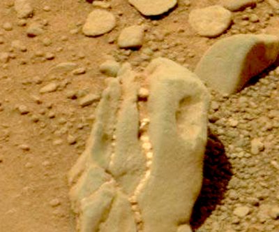 Fossilized Dinosaur Skull Spotted On Mars 2015, UFO Sighting News