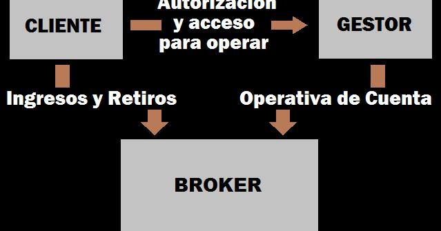 Gestion cuentas forex