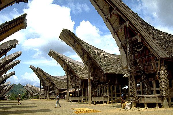 Tana Toraja Indonesia  city images : Tongkonan adalah rumah tradisional Toraja yang berdiri di atas ...