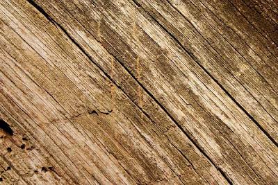 texturas de alta calidad wood