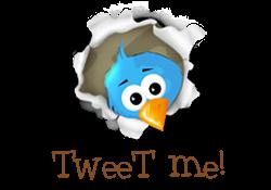 Meet me on Twitter