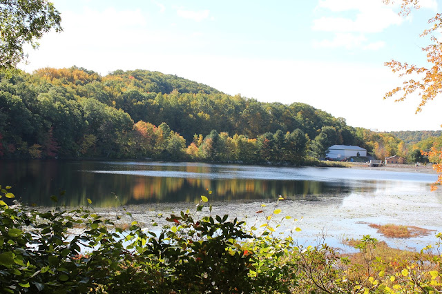 View of Lantern Hill Pond hiking the Pequot Trails #walktober The Last Green Valley