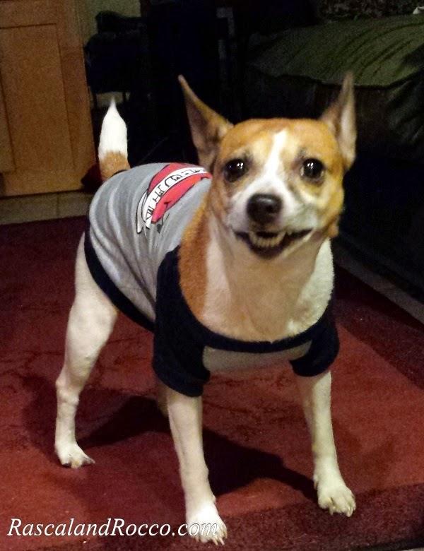 What Made the Dog Smile? #CanineCaviar Grain Free Holistic Dog Food