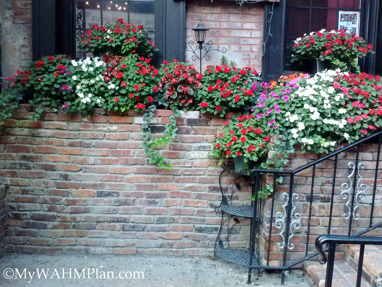 Beautiful flowers and iron work Printers Alley #Nashville