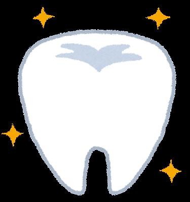 歯のイラスト「健康的な歯」