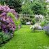 Allee Garden