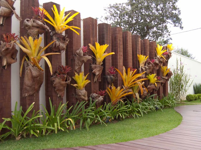 jardim vertical xaxim:Monte sue jardim de bromélias