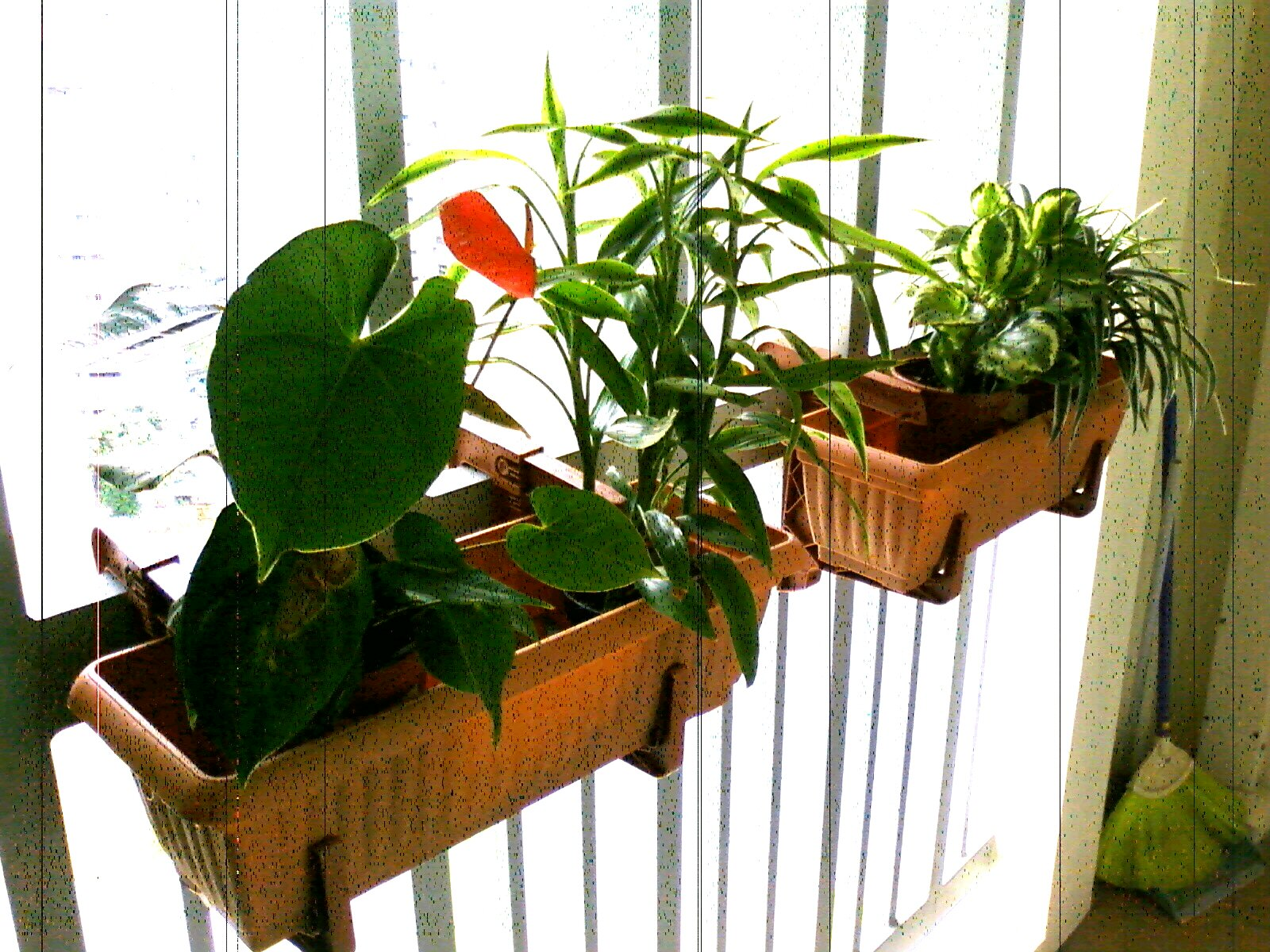 pretty gardens deck rail planter makes great small space gardens. Black Bedroom Furniture Sets. Home Design Ideas