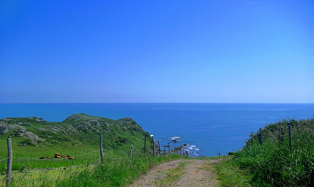 Camino Playas Cabo Oyambre