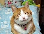 senyum lucu