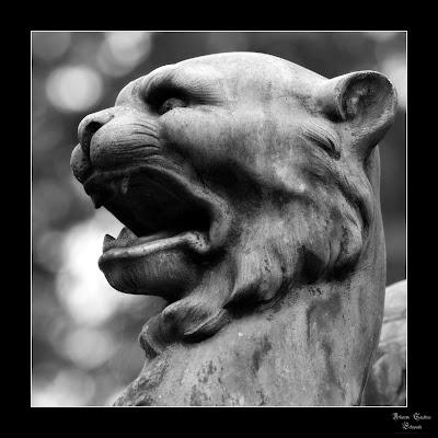 ein Löwenkopf auf dem Fangelsbachfriedhof Stuttgart