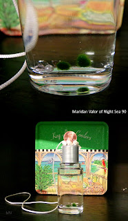 Pictures of my marimo; A post with pictures of marimo. Night Sea 90.