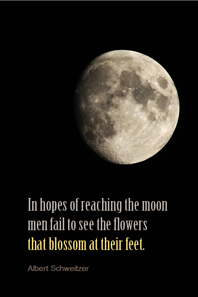 visual quote - image quotation for Awareness - In hopes of reaching the moon men fail to see the flowers that blossom at their feet. - Albert Schweitzer