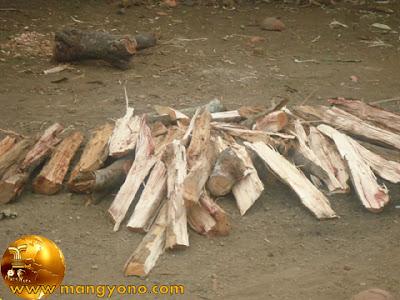 Kayu yang besar harus dibelah, kayu yang basah harus dijemur dulu.