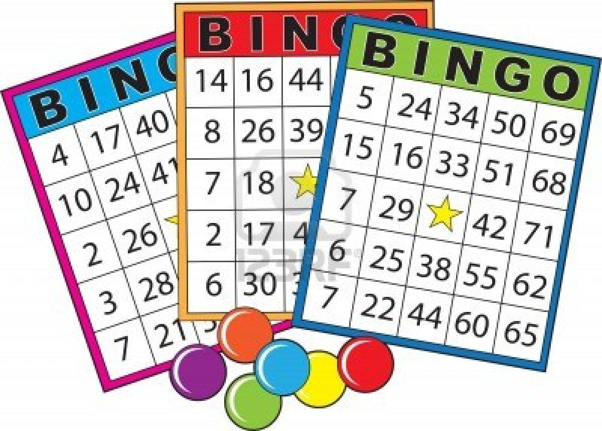 Bingo und andere Tiergeschichten mit vielen