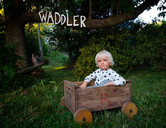 Waddler AW14/15 bowler hat print