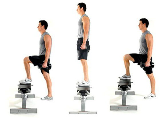 box step ups with weight 2