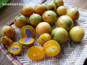 Manfaat buah gandaria