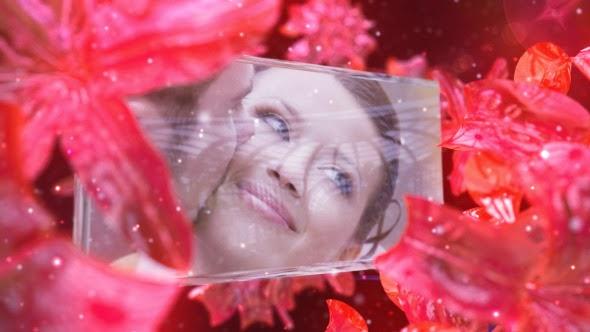 VideoHive Wedding Fairy