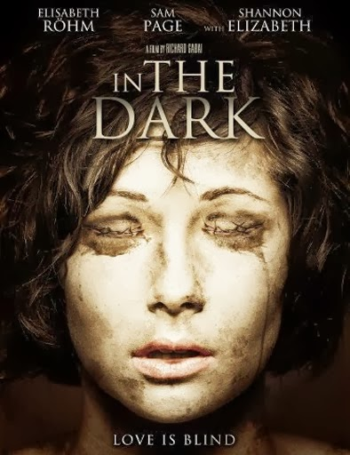 A ciegas (In the Dark) (2013)