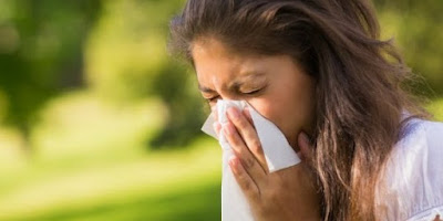 Identify 9 foods that can treat allergies